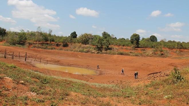 Người dân Đắk Lắk đang phải gồng mình chống cảnh khô hạn