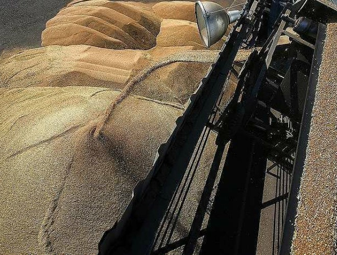 Nga viện trợ nhân đạo hơn 2.000 tấn lúa mì cho Triều Tiên ảnh 1