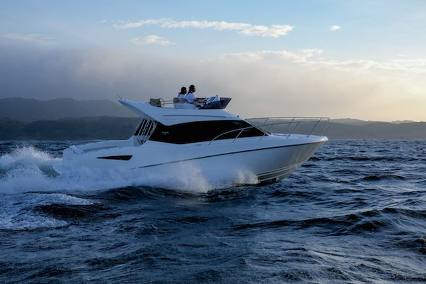 Toyota giới thiệu du thuyền thể thao Ponam-31 ảnh 1