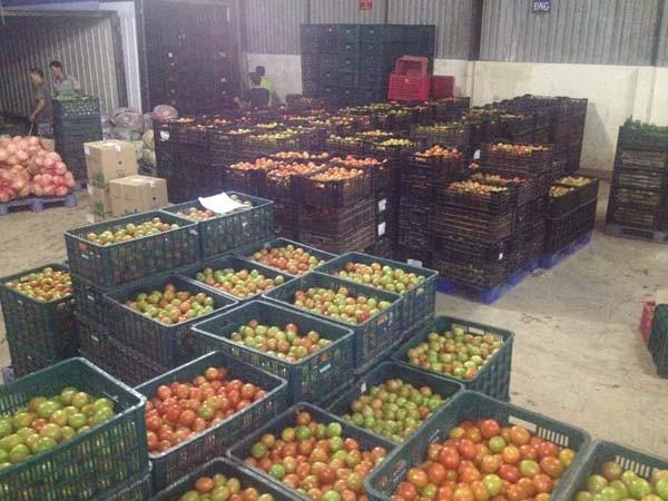 Cà chua Đà Lạt được Big C bán với giá vốn