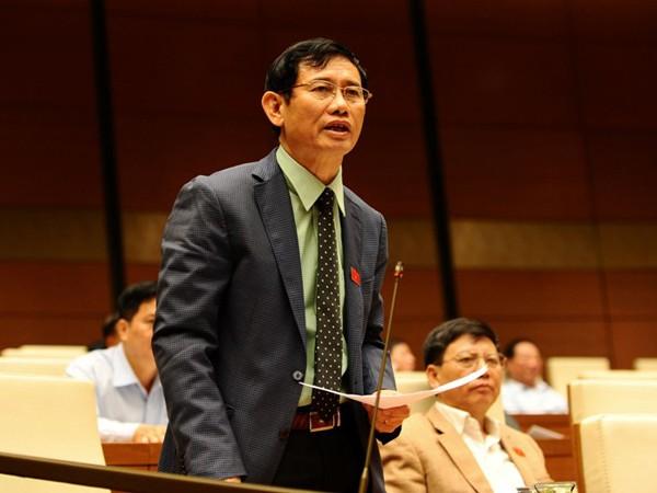 ĐB Nguyễn Ngọc Phương (Quảng Bình) phát biểu tại hội trường