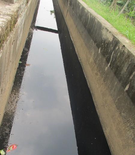 """Sông Đáy thơ mộng bị ô nhiễm trầm trọng, trở thành """"dòng sông chết"""" ảnh 4"""
