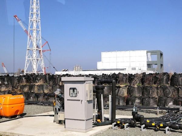 Phóng xạ từ nhà máy hạt nhân Fukushima được phát hiện gần bờ biển Mỹ ảnh 1