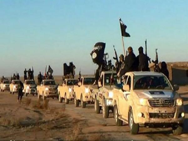 Lực lượng phiến quân nhà nước hồi giáo tự xưng (IS)