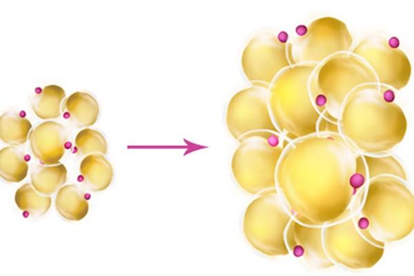 Tế bào u bướu tăng sinh vô kiểm soát