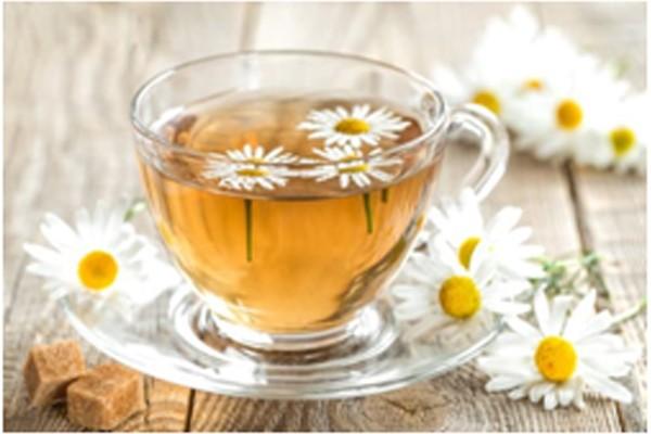 Hoa cúc là thảo dược trị hôi miệng hiệu quả