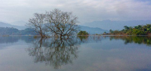 [AUDIO 28-10-2019] Việt Nam có thêm 4 danh hiệu Vườn Di sản ASEAN ảnh 1