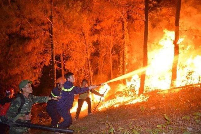 Vụ cháy rừng lịch sử tại Hà Tĩnh hồi tháng 6-2019 gây nhiều thiệt hại nghiêm trọng
