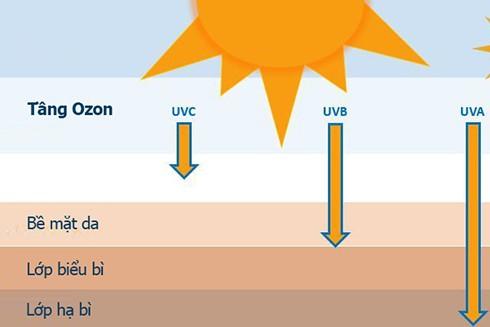 Tia UV có thể đi sâu vào tận lớp hạ bì của da