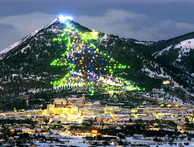 [ẢNH] Không thể bỏ lỡ cơ hội chiêm ngưỡng 10 cây thông Giáng sinh đang giữ kỷ lục thế giới ảnh 5