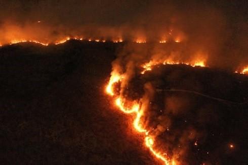 Một trong những đám cháy dữ dội trong rừng nhiệt đới Amazon ở bang Tocatins, Brazil