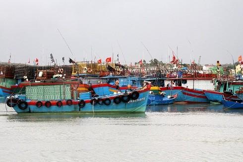 Tàu thuyền về bến tránh thiên tai
