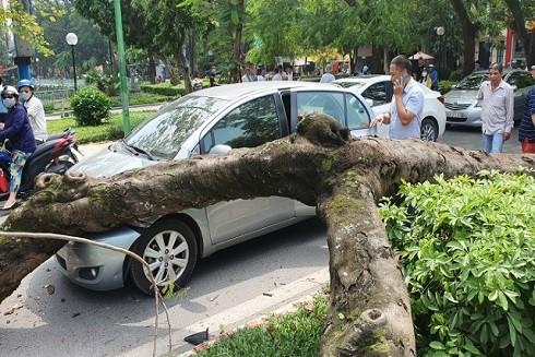 Hiện trường chiếc xe bị móp méo và hư hỏng nặng (Theo Dân trí)
