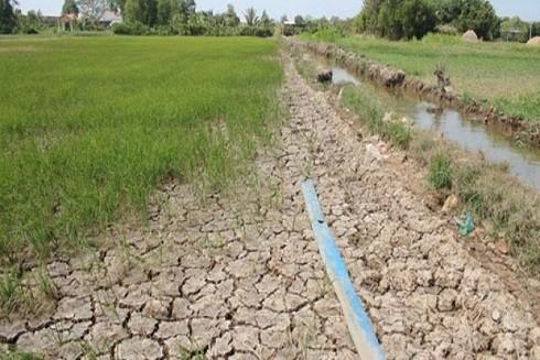 Tình trạng xâm nhập mặn ở Đồng bằng sông Cửu Long có thể vượt mức lịch sử