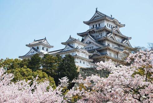 Đến Tokyo thời điểm này du khách sẽ được tham quan cung điện Hoàng gia Nhật Bản