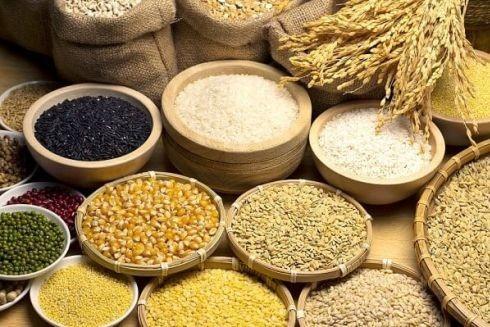 Các loại ngũ cốc có thể được dùng làm sản phẩm thay thế hạt vi nhựa