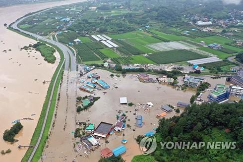 Làng Hadong thuộc tỉnh Nam Gyongsang chìm trong biển lũ
