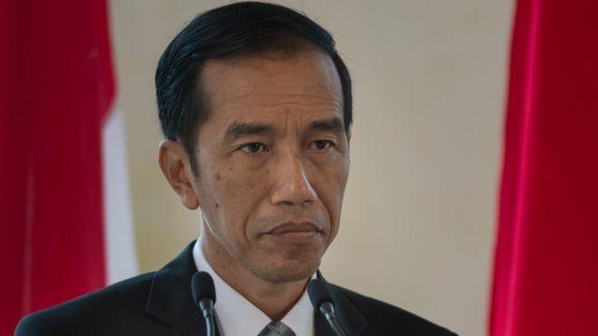 Đây là lần đầu ông Joko Widodo thăm Nhật Bản trên cương vị Tổng thống Indonesia