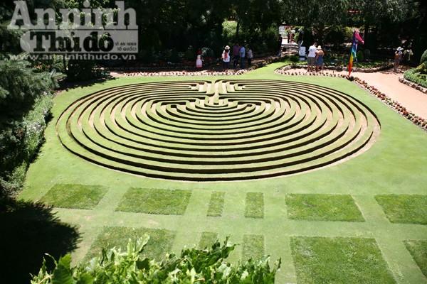 Bảy ngày vòng quanh Australia (7): Ngỡ ngàng lạc vào vườn cổ tích ở Canberra ảnh 12