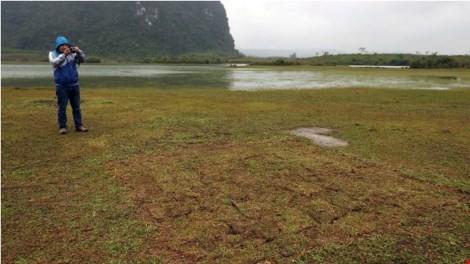 Bãi cỏ được đào lên để quay phim, sau đó đã được trả lại hiện trường một cách rất chuyên nghiệp