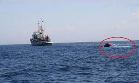 Yêu cầu Trung Quốc bồi thường tàu cá Quảng Ngãi bị đâm chìm ảnh 2