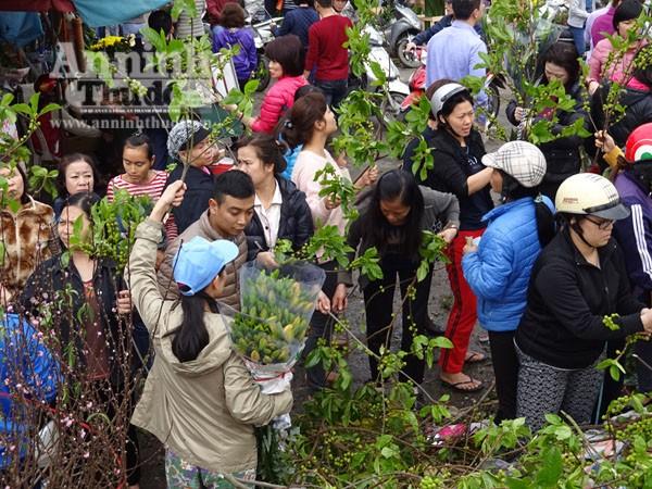 Đổ xô đi mua hoa giá rẻ gây ùn tắc cục bộ trên đường Âu Cơ ảnh 5