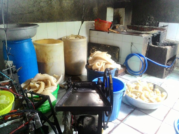 TP.HCM: Phát hiện lò sản xuất bì lợn bẩn, ngâm tẩm hóa chất ảnh 1
