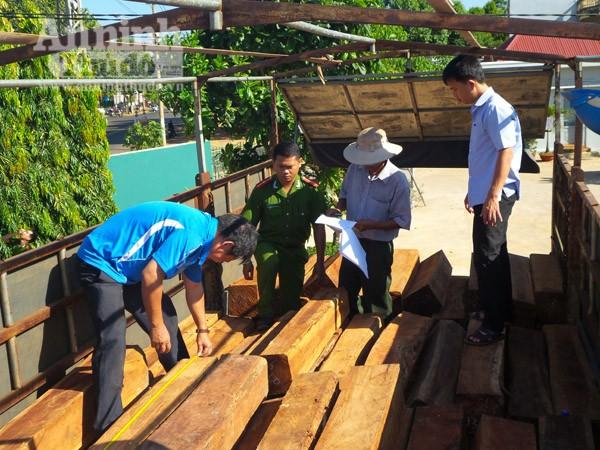 Phát hiện xe tải chở 16m3 gỗ lậu từ Gia Lai về Đắk Lắk ảnh 1