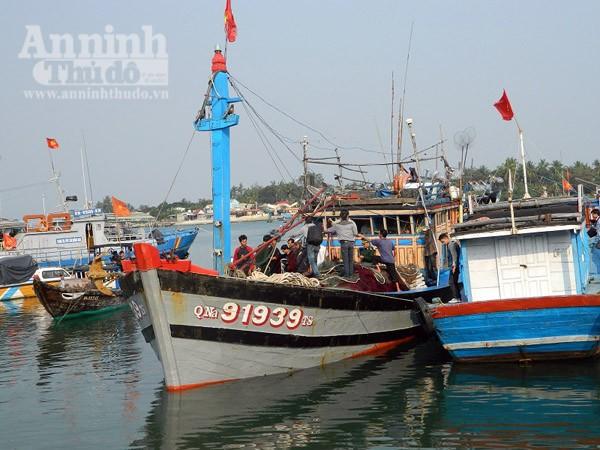 Ngư dân Quảng Nam kể lại vụ tàu Trung Quốc cướp phá tàu cá ảnh 1