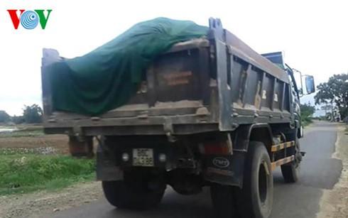 Xe chở cát lậu ngang nhiên chạy qua trước mặt trụ sở UBND xã Hàm Liêm