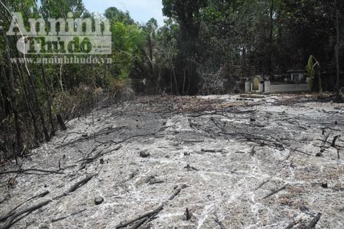 Hiện trường nơi phát hiện xác anh Phùng Hòa Phước bị chết cháy