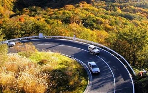 Đi xe đường đèo nguy hiểm nếu lái xe không có kinh nghiệm (Ảnh minh họa: Internet)