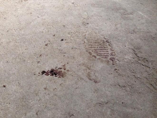 Thảm án tại Quảng Ninh: Phát hiện hàng loạt dấu tay, chân nghi của kẻ sát hại 4 bà cháu ảnh 9