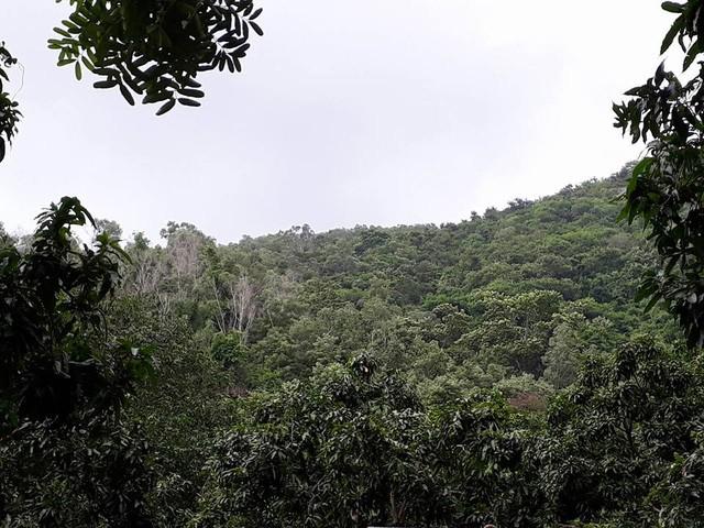Khu vực chùa Kim Liên, nơi tin báo về cho biết đã phát hiện các mảnh vỡ máy bay và thi thể 3 người bị nạn (Ảnh: Dân trí)