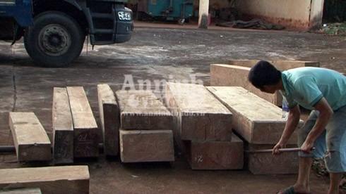 Số gỗ lậu trên xe được đưa xuống để lực lượng chức năng kiểm đếm