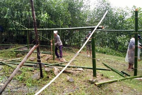 Người dân thôn Trà Khương, xã Trà Lâm, huyện Trà Bồng, giúp nhau dựng lều ở tạm