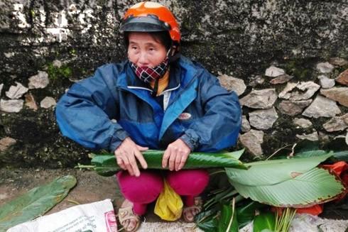 Cận Tết, lá dong trở nên khan hiếm ở nhiều phiên chợ quê