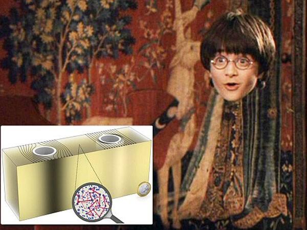 Áo tàng hình của Harry Potter sẽ trở thành giáo cụ trực quan ảnh 1