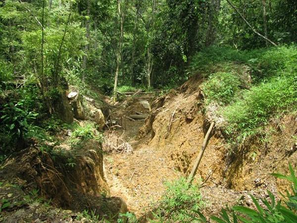 Một trong các bãi đào vàng ở bản Kịt, xã Lũng Cao (huyện Bá Thước)
