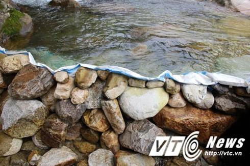 Đắp bờ chặn suối để bắn cá.