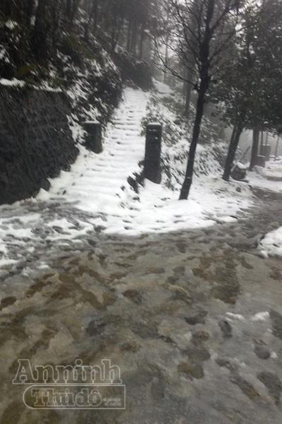 Tuyết rơi trắng xóa Ô Quy Hồ, du khách đổ về Sa Pa ảnh 6