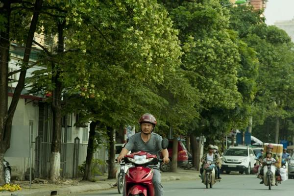 Ngắm những góc phố Hà Nội tràn ngập hoa sữa ảnh 2