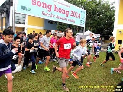 Khởi động Giải chạy Sông Hồng 2015 – Chạy vì tê giác ảnh 1