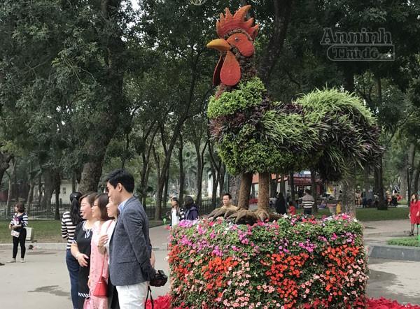 """12 con giáp """"khủng"""" trong công viên Thống Nhất ra hoa rực rỡ ảnh 1"""