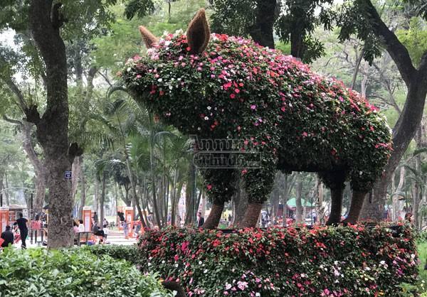 """12 con giáp """"khủng"""" trong công viên Thống Nhất ra hoa rực rỡ ảnh 10"""