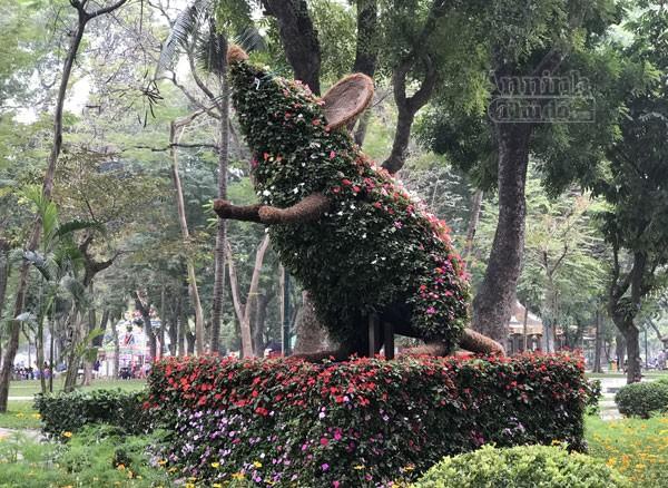 """12 con giáp """"khủng"""" trong công viên Thống Nhất ra hoa rực rỡ ảnh 8"""