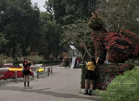 """12 con giáp """"khủng"""" trong công viên Thống Nhất ra hoa rực rỡ ảnh 4"""