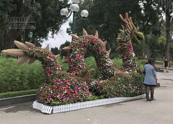 """12 con giáp """"khủng"""" trong công viên Thống Nhất ra hoa rực rỡ ảnh 5"""