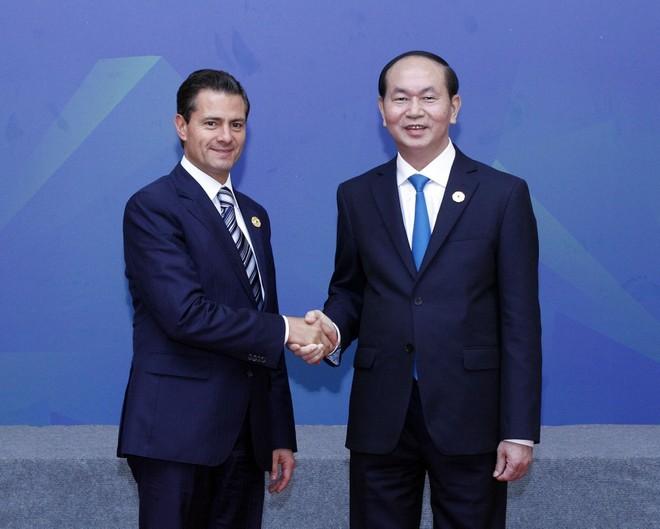 Chủ tịch nước Trần Đại Quang chủ trì Đối thoại Lãnh đạo APEC với ABAC ảnh 6