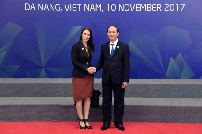 Chủ tịch nước Trần Đại Quang chủ trì Đối thoại Lãnh đạo APEC với ABAC ảnh 7